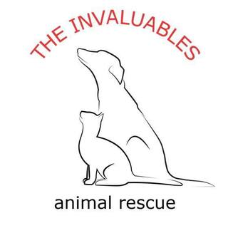 The Invaluables Animal Rescue