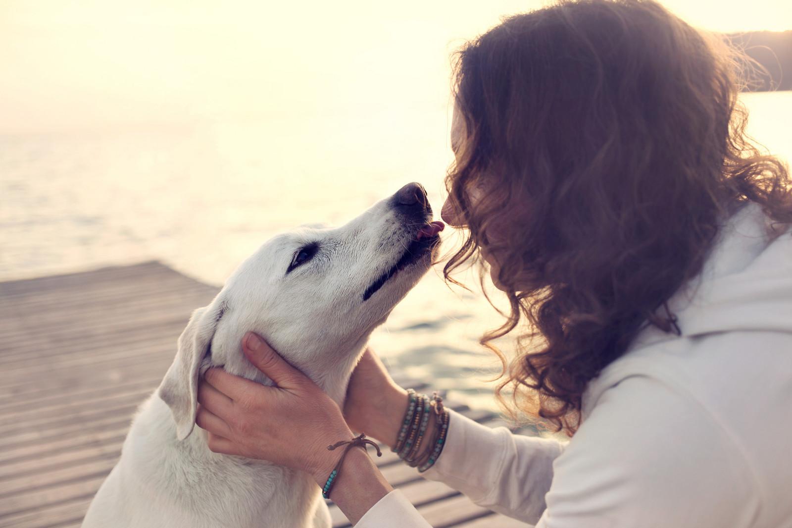 9594150f5e91 Πώς ο σκύλος μου με έκανε καλύτερο άνθρωπο
